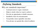 defining standards29