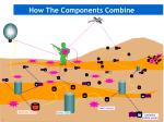 how the components combine