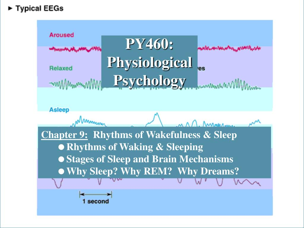 py460 physiological psychology l.