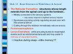 slide 14 brain structures in wakefulness arousal