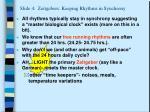slide 4 zeitgebers keeping rhythms in synchrony