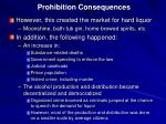 prohibition consequences