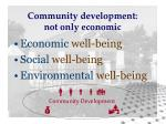 community development not only economic