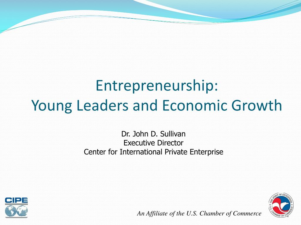 entrepreneurship young leaders and economic growth l.