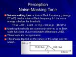 perception noise masking tone