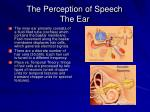 the perception of speech the ear33