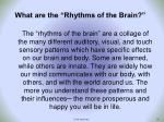 what are the rhythms of the brain