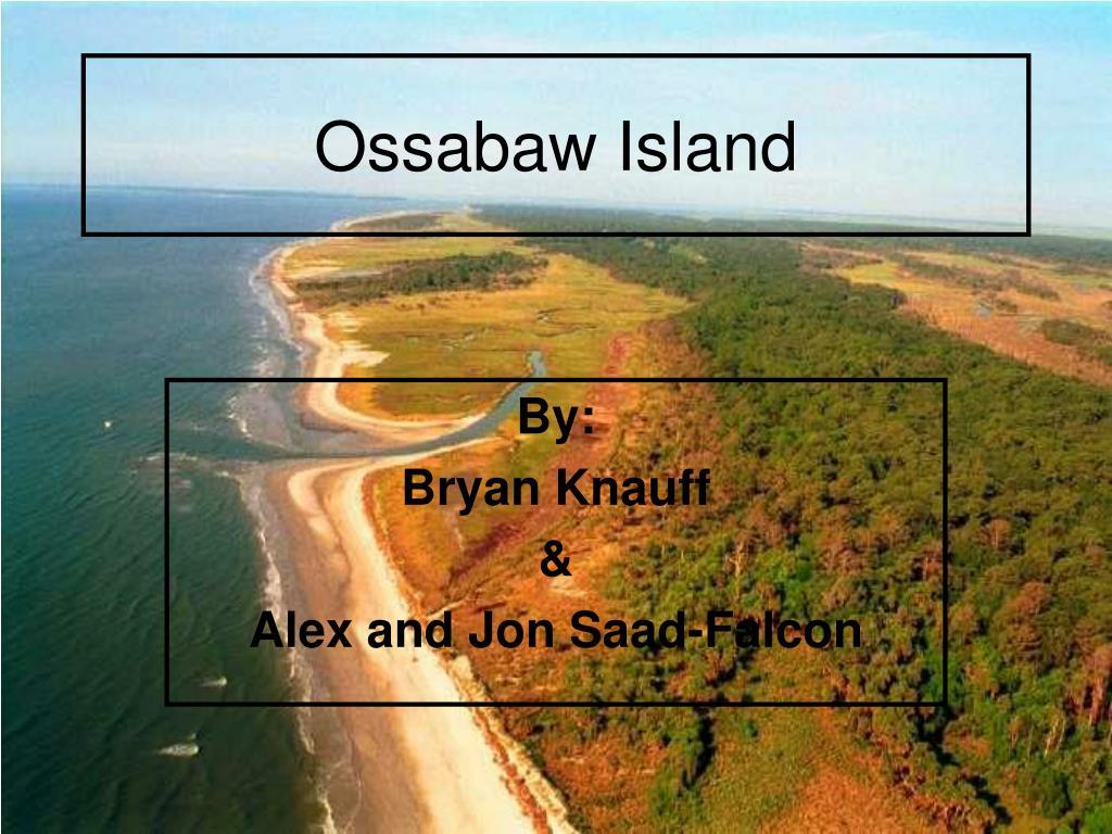 ossabaw island l.