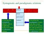syntagmatic and paradigmatic relations