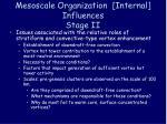 mesoscale organization internal influences stage ii11