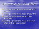professional building blocks
