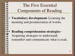 the five essential components of reading19