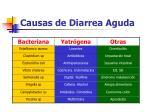 causas de diarrea aguda7