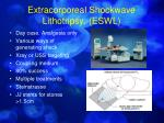 extracorporeal shockwave lithotripsy eswl