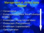 management of urinary stone disease