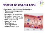 sistema de coagulaci n16
