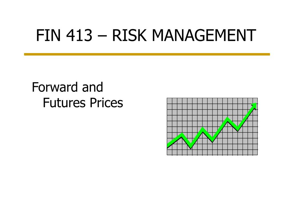 fin 413 risk management l.