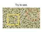 try to see