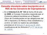 consulta vinculante sobre inscripci n en el ruc de los consorcio de copropietarios