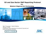 oil and gas sector e p reporting protocol