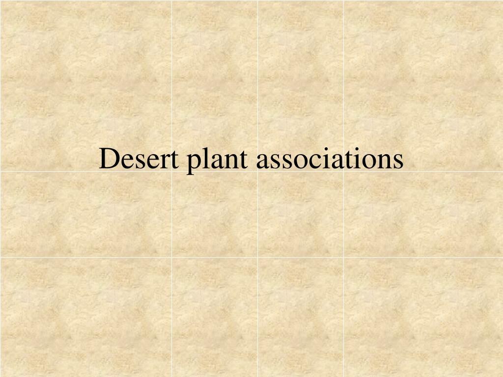 desert plant associations l.
