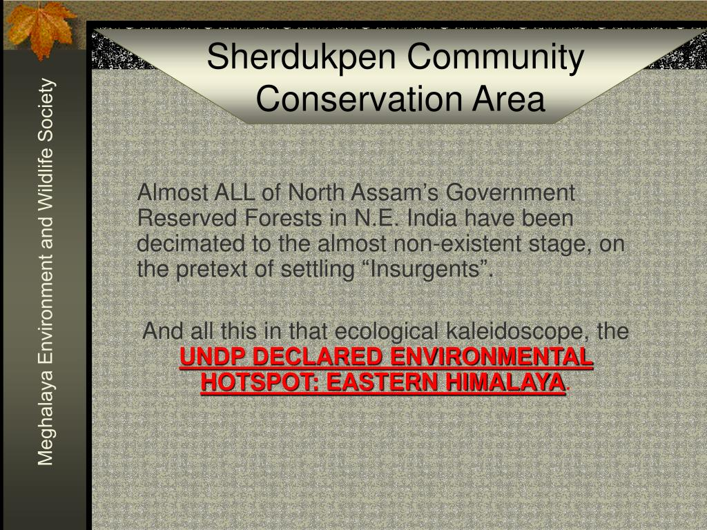"Almost ALL of North Assam's Government Reserved Forests in N.E. India have been decimated to the almost non-existent stage, on the pretext of settling ""Insurgents""."
