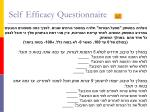 self efficacy questionnaire