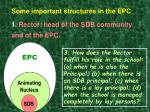 some important structures in the epc 1 rector head of the sdb community and of the epc