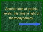 another look at trophic levels this time in light of thermodynamics