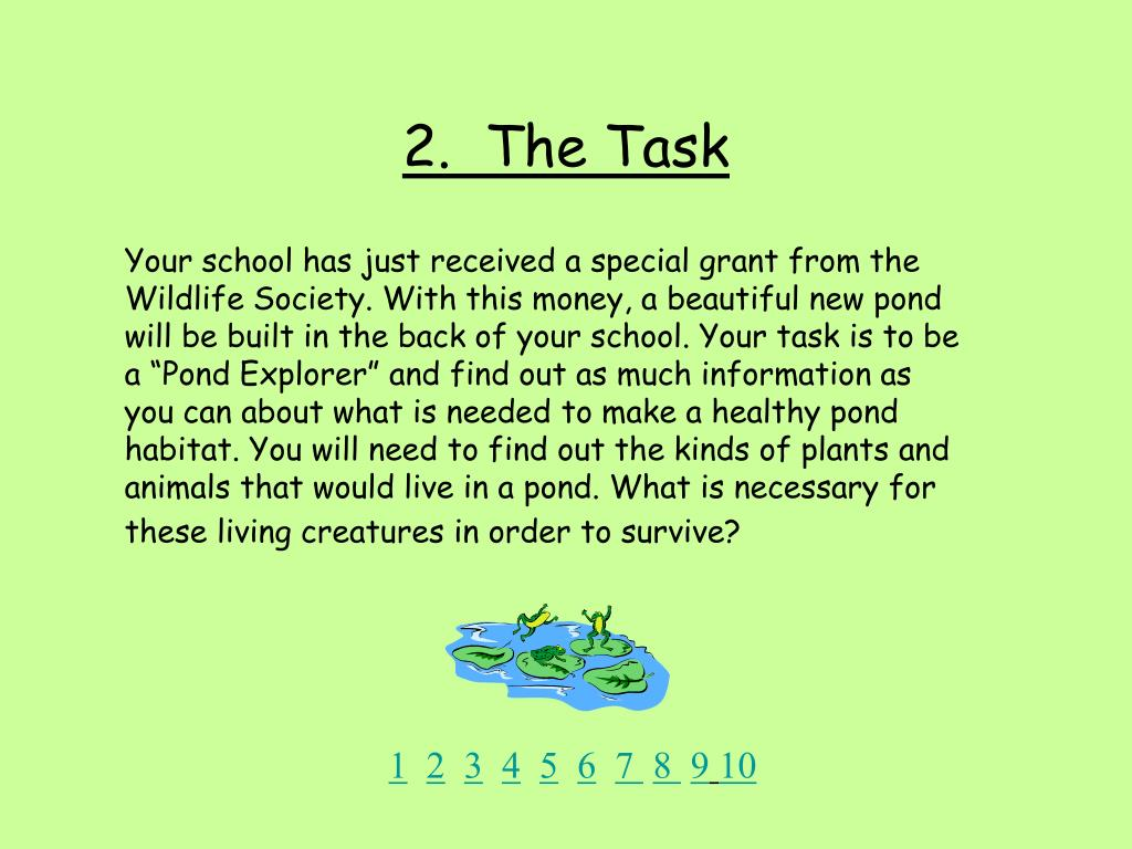 2.  The Task