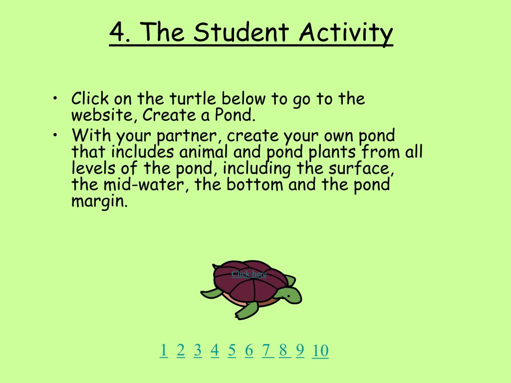 4. The Student Activity