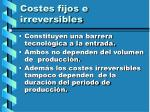 costes fijos e irreversibles