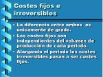 costes fijos e irreversibles51
