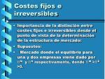 costes fijos e irreversibles52