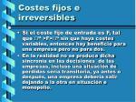 costes fijos e irreversibles53