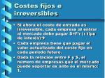 costes fijos e irreversibles54