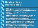 costes fijos e irreversibles55