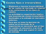 costes fijos e irreversibles56