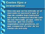 costes fijos e irreversibles57