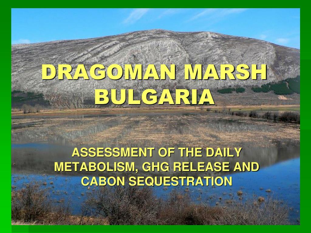 dragoman marsh bulgaria l.