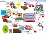 kvalitetssikring prosesstyring45