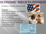 economic services division