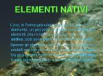 elementi nativi