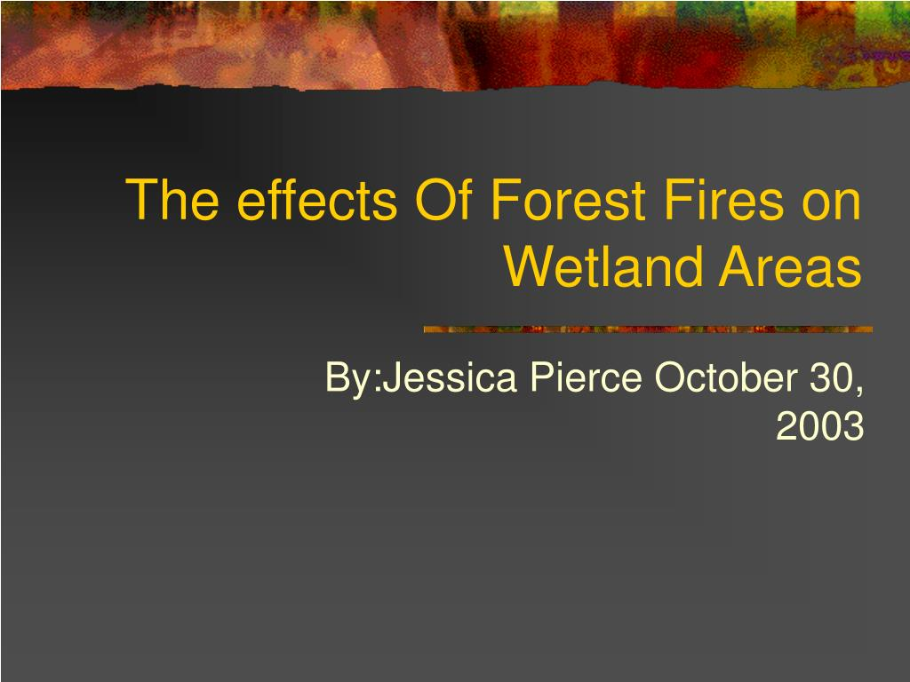 the effects of forest fires on wetland areas l.
