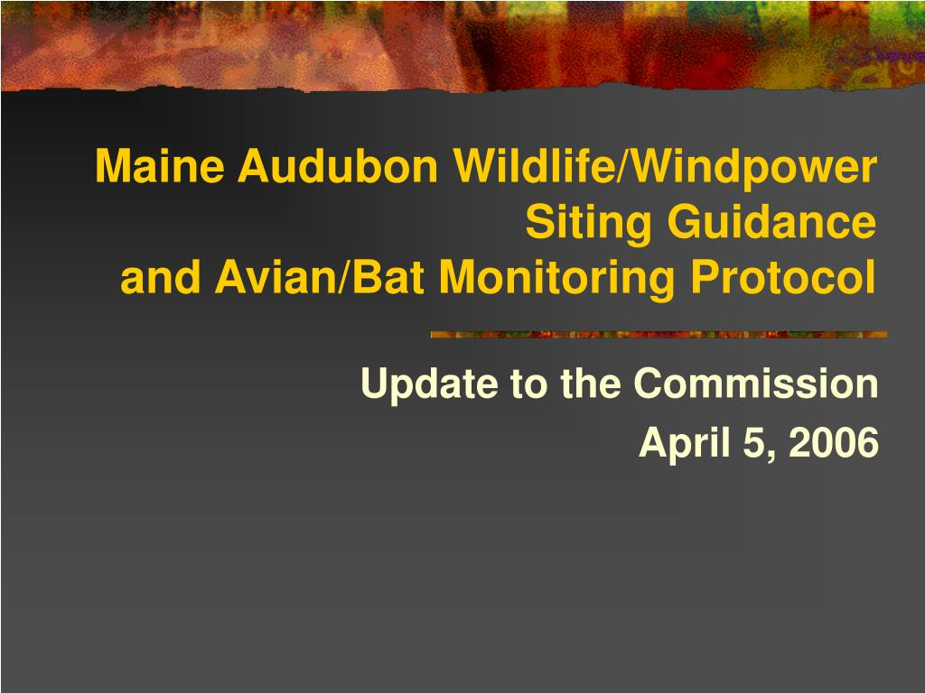 maine audubon wildlife windpower siting guidance and avian bat monitoring protocol l.