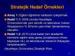 stratejik hedef rnekleri81