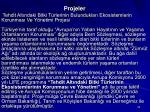 projeler