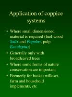 application of coppice systems