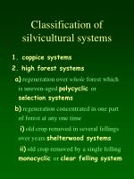 classification of silvicultural systems