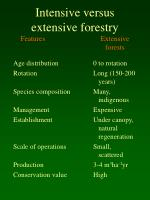 intensive versus extensive forestry features extensive forests